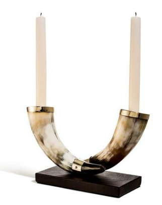 Double Horn Candleholder Light
