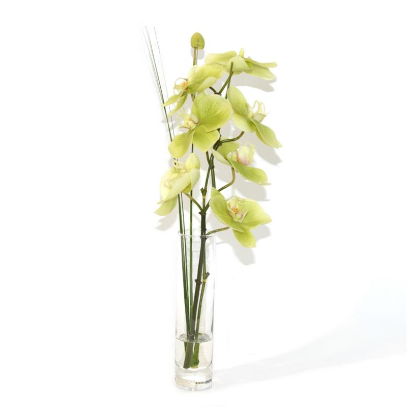 Green Phalaenopsis Orchid Branch Bud Vase