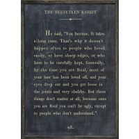 The Book Collection Velveteen Rabbit Art Print