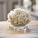Ribbon Coral from belleandjune.com | Console Table